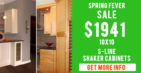 shaker kitchen cabinet special